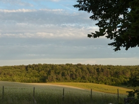 paysage de campagne française